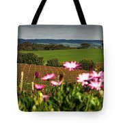 The View Behind  Tote Bag