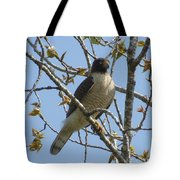 The View From Above V Tote Bag