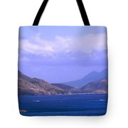 The View From Marshalls Tote Bag