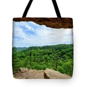 The Vista Extraordinaire Tote Bag