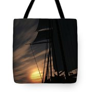 The Voyage Home  Tote Bag