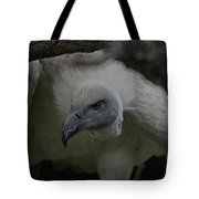 The Vulture Dry Brushed Tote Bag