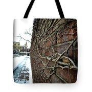 The Wall That Never Ends Tote Bag