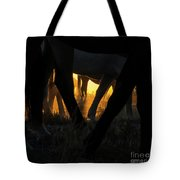 The Wandering Few Tote Bag by Nicole Markmann Nelson