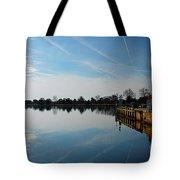 The Washington D.c. Basin Tote Bag