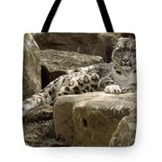 The Watchful Stare Of A Snow Leopard Tote Bag