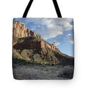 The Watchman Tote Bag by Kenneth Hadlock