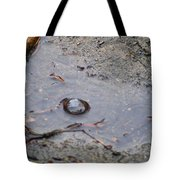The Water Bubble Tote Bag