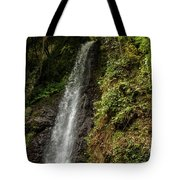 The Water Falling At The Yoro Waterfall In Gifu, Japan, November Tote Bag