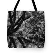 The Water Margins - Monochrome  Tote Bag