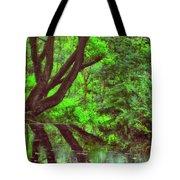 The Water Margins - Nutclough Woods Tote Bag