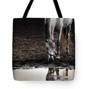 The Water Reflection Tote Bag