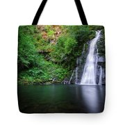 The Waterfall And Large Pool Of Vieiros Tote Bag