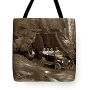 The Wawona Tree Mariposa Grove, Yosemite  Circa 1916 Tote Bag