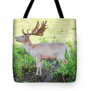 The White Stag 2 Tote Bag
