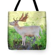 The White Stag 3 Tote Bag