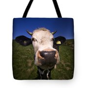 The Wideangled Cow  Tote Bag