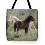 The Wild And Free  Tote Bag