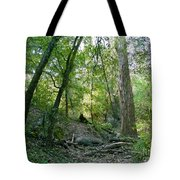 The Wild Medina Tote Bag