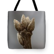The Willow King Tote Bag