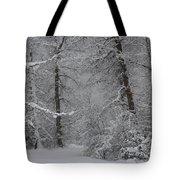 The Winter Path Tote Bag