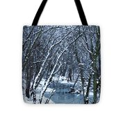 The Winter Stream  Tote Bag