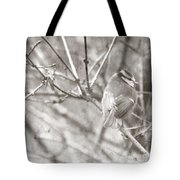 The Winter Time Tote Bag