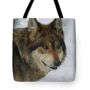 The Wolf 2 Tote Bag
