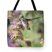 The Wonder Of Wings  Tote Bag
