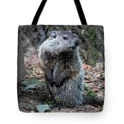 The Woodchuck Has To Pee Tote Bag