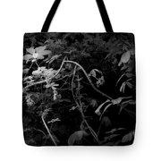 The World Of Vine Tote Bag