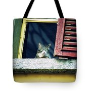 The World Outside Tote Bag