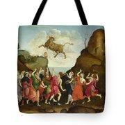 The Worship Of The Egyptian Bull God Apis Tote Bag
