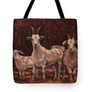 The Year Of The Sundance Kid Tote Bag