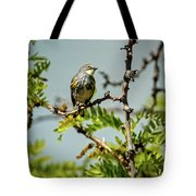 The  Yellow-rumped Warbler Tote Bag