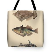 The Zoology Of Captain Beechey's Voyage  Tote Bag