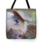 Thelma Lou Tote Bag