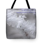 There Are Many Lessons To Learn... Tote Bag