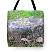 There Is A Fungus Among Us Tote Bag
