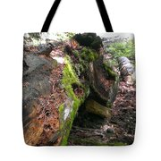 There Is Still Life Tote Bag