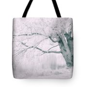There Was A Time.... Tote Bag