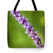 There You Are Blazing Star Tote Bag