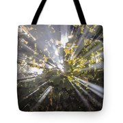 Therefrom Tote Bag