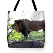 Theres Nothing Like A Good Roar To Start The Morning Tote Bag
