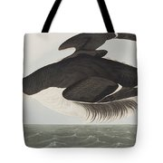 Thick-billed Murre Tote Bag