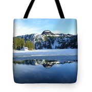 Thin Ice Tote Bag