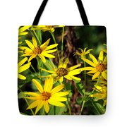 Thin-leaved Sunflower Tote Bag
