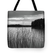 Thin Rain In The Evening Tote Bag