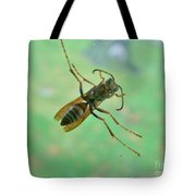 Thin Waisted Wasp On Door Glass     October  Indiana Tote Bag