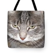 Thinking Holly The Cat Tote Bag